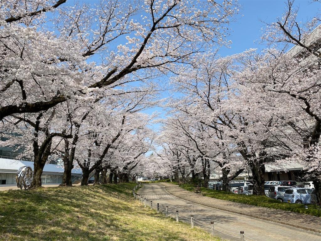 f:id:HIROAKI-ISHIWATA:20210326120503j:image