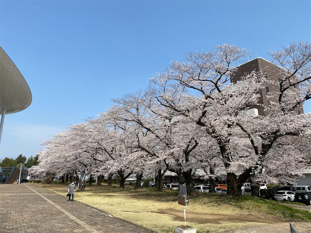 f:id:HIROAKI-ISHIWATA:20210326120507j:image