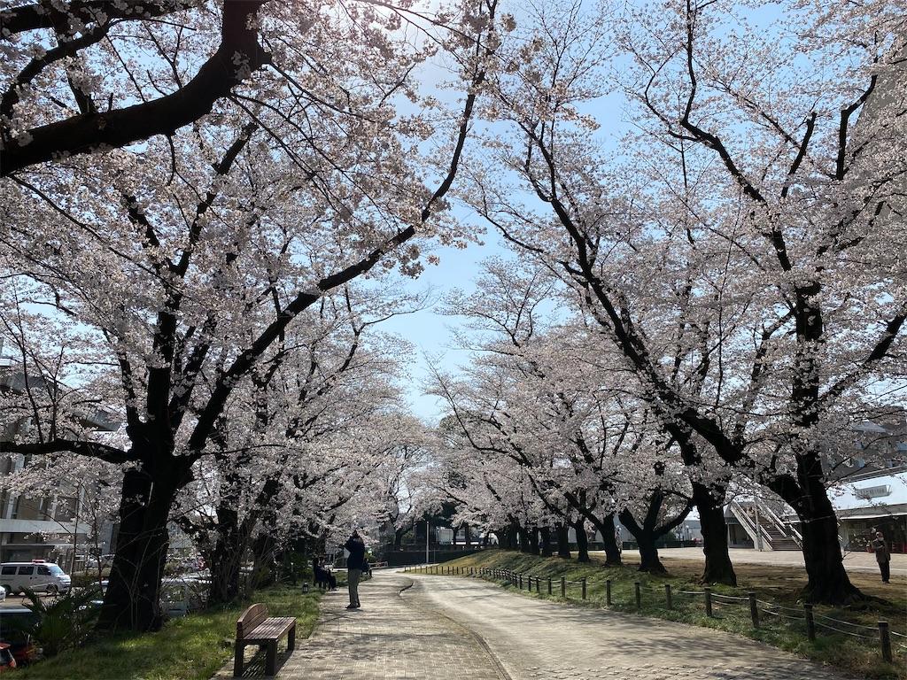 f:id:HIROAKI-ISHIWATA:20210326120510j:image