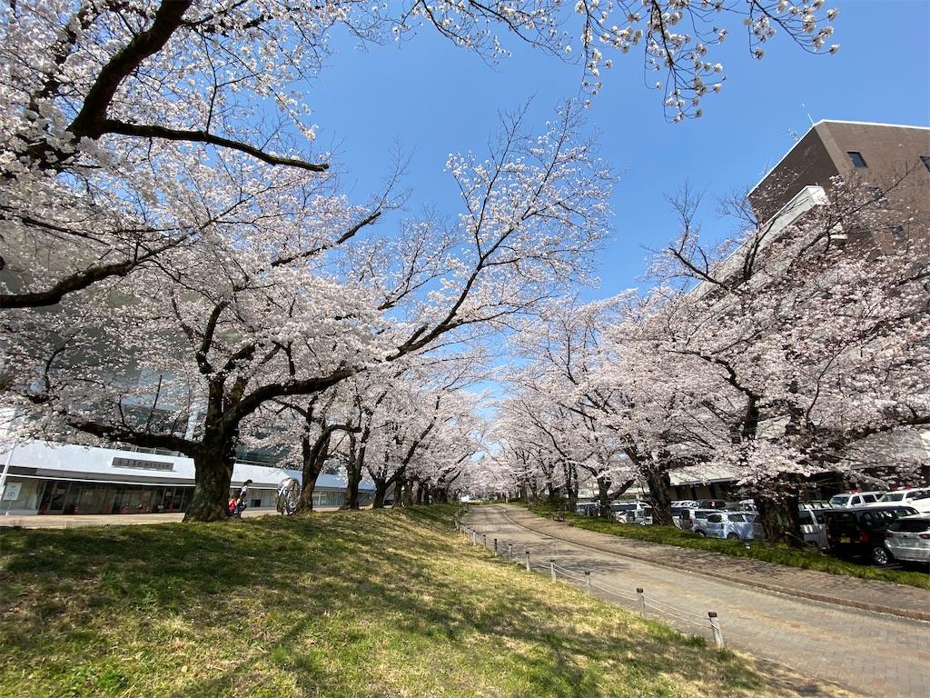 f:id:HIROAKI-ISHIWATA:20210326120516j:image