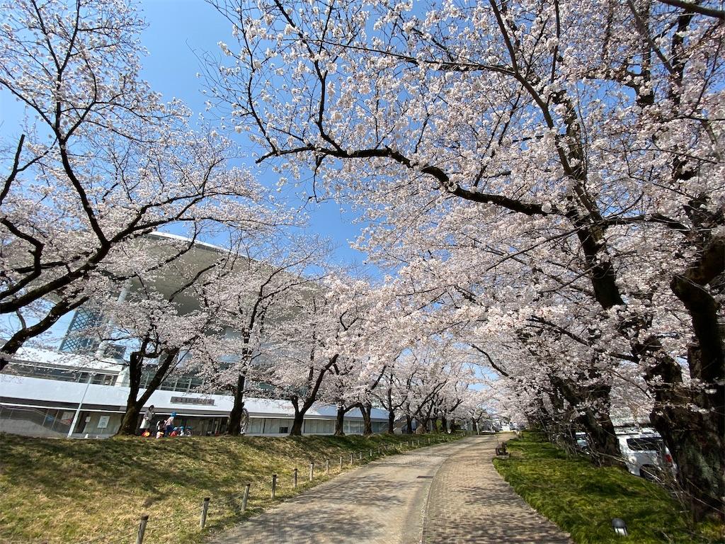 f:id:HIROAKI-ISHIWATA:20210326120521j:image