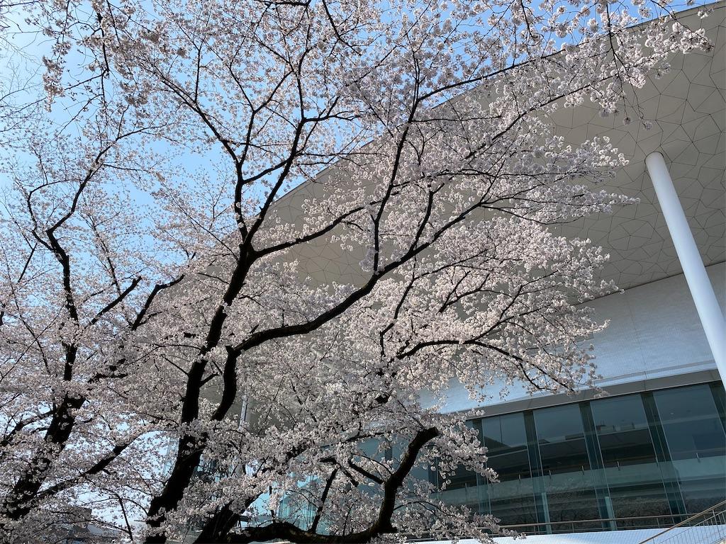 f:id:HIROAKI-ISHIWATA:20210326120524j:image