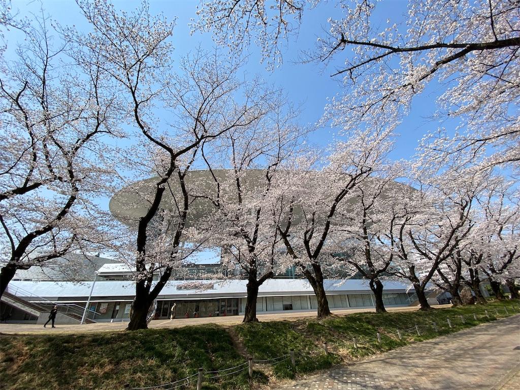 f:id:HIROAKI-ISHIWATA:20210326120535j:image