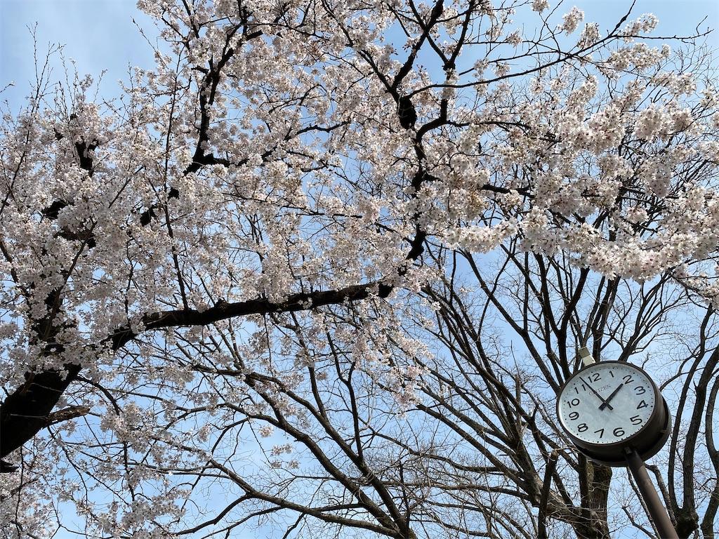 f:id:HIROAKI-ISHIWATA:20210327151425j:image