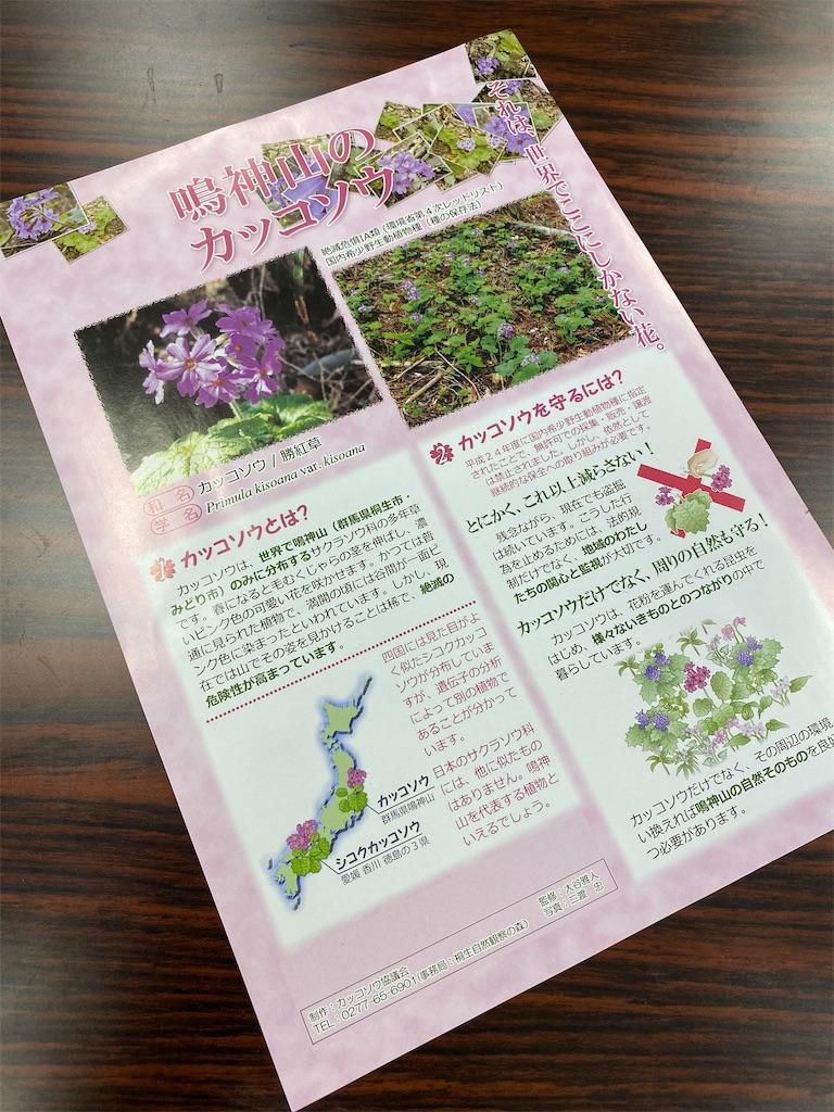 f:id:HIROAKI-ISHIWATA:20210406144726j:image