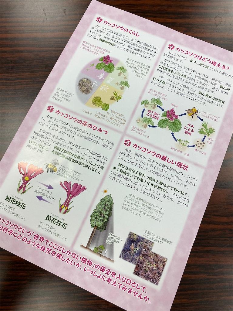 f:id:HIROAKI-ISHIWATA:20210406144731j:image
