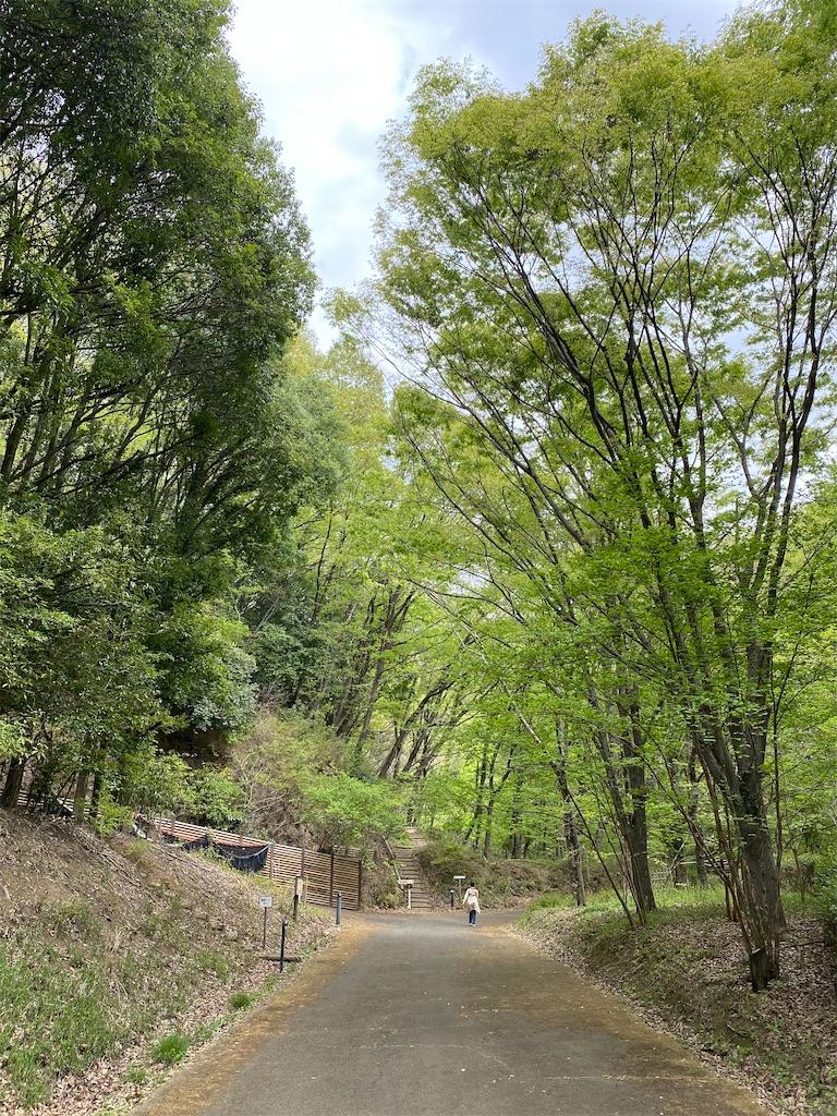 f:id:HIROAKI-ISHIWATA:20210416160846j:image
