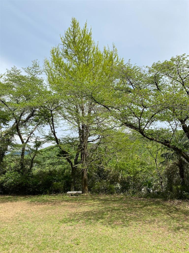 f:id:HIROAKI-ISHIWATA:20210422141351j:image