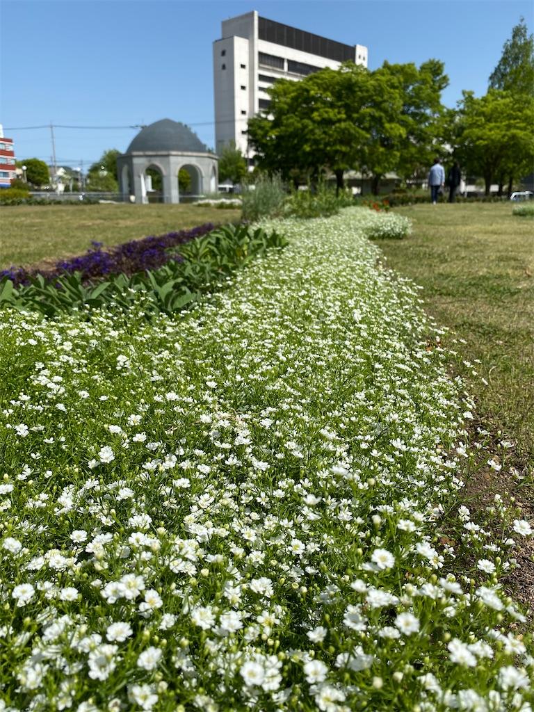 f:id:HIROAKI-ISHIWATA:20210430145227j:image