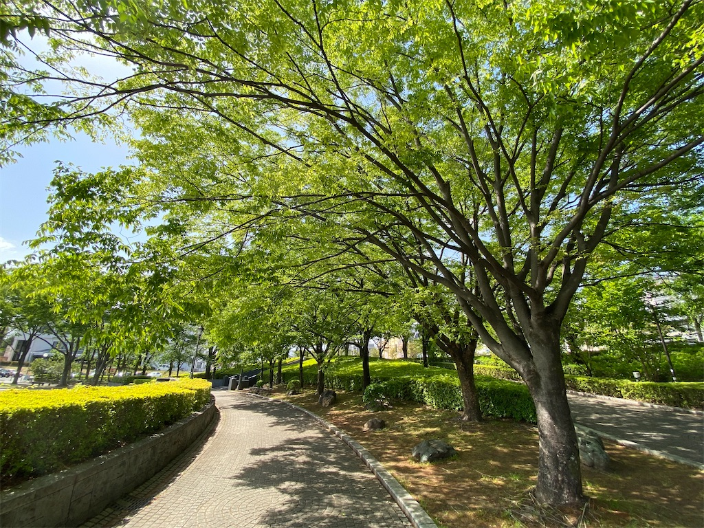 f:id:HIROAKI-ISHIWATA:20210430145333j:image