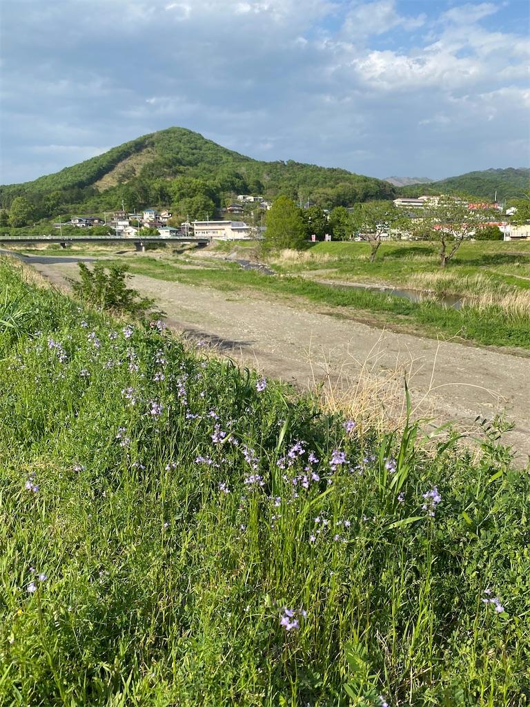 f:id:HIROAKI-ISHIWATA:20210502184522j:image