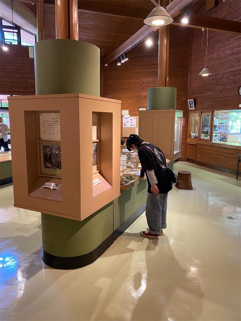 f:id:HIROAKI-ISHIWATA:20210503224142j:image