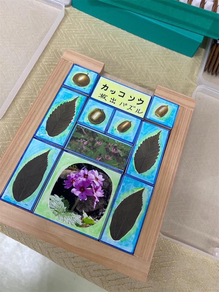 f:id:HIROAKI-ISHIWATA:20210503224153j:image