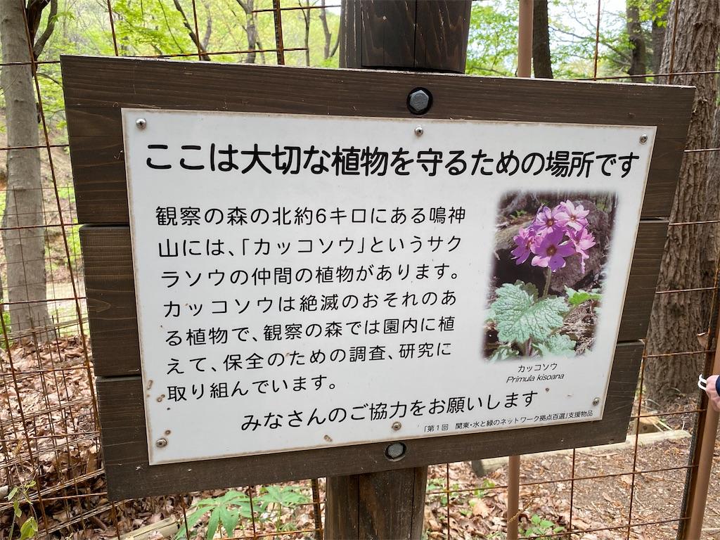 f:id:HIROAKI-ISHIWATA:20210507221812j:image