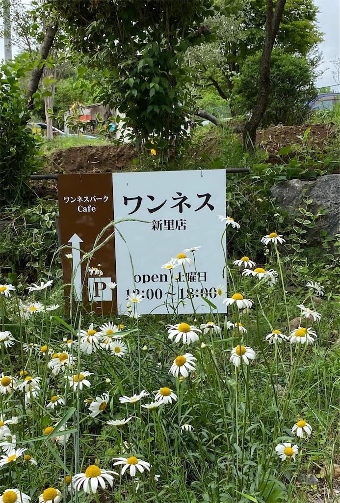 f:id:HIROAKI-ISHIWATA:20210522170102j:image