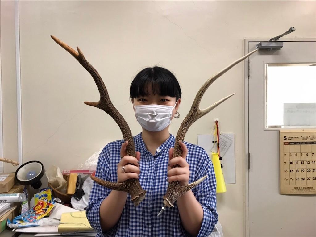 f:id:HIROAKI-ISHIWATA:20210708184859j:image