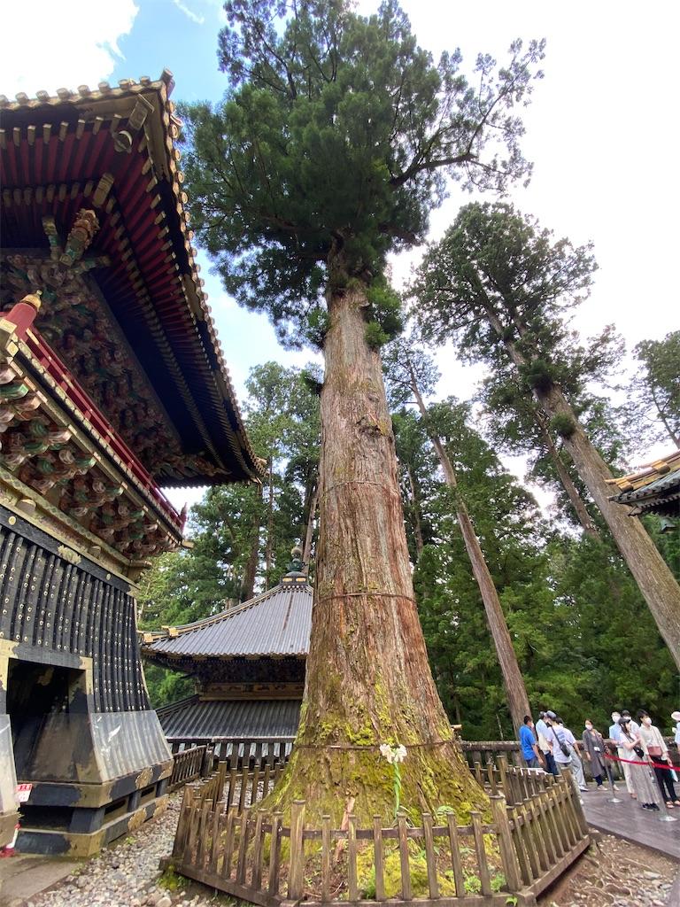 f:id:HIROAKI-ISHIWATA:20210724220534j:image