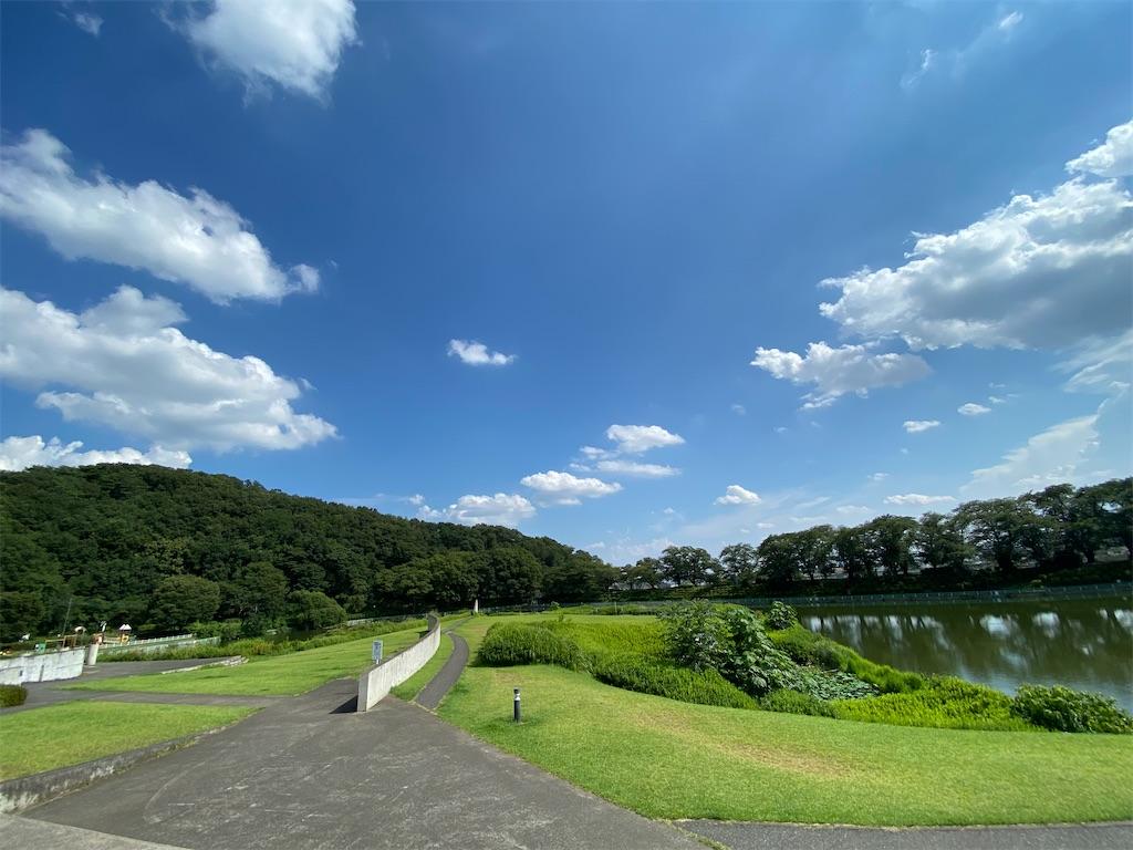 f:id:HIROAKI-ISHIWATA:20210801172830j:image