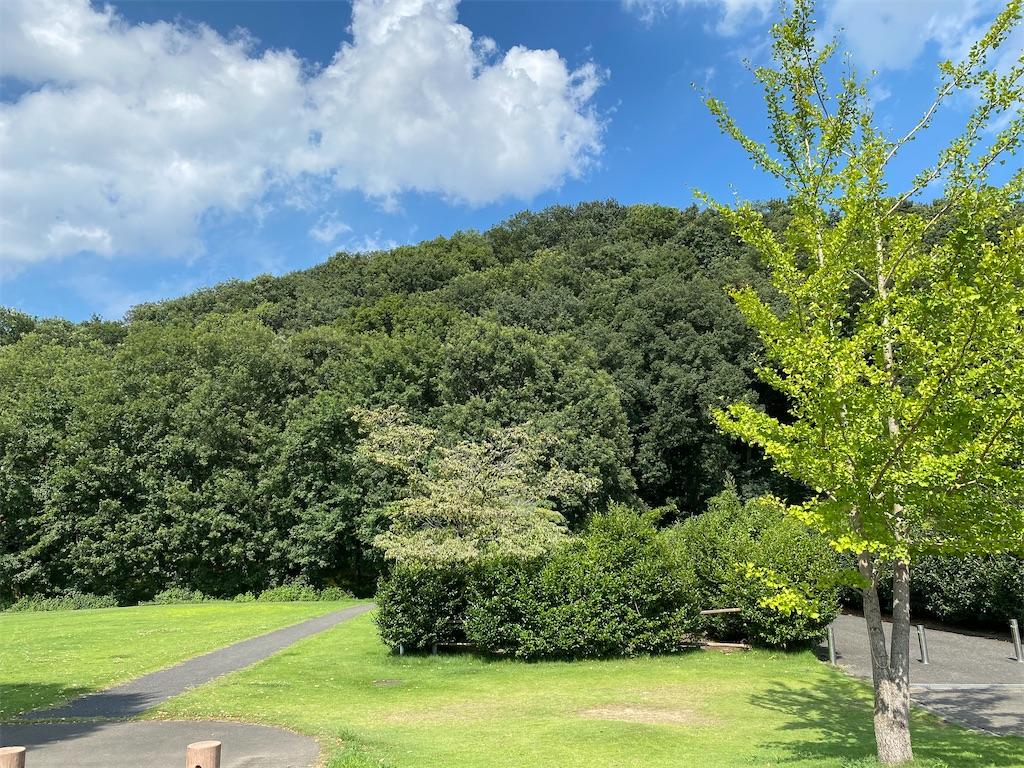 f:id:HIROAKI-ISHIWATA:20210801172847j:image