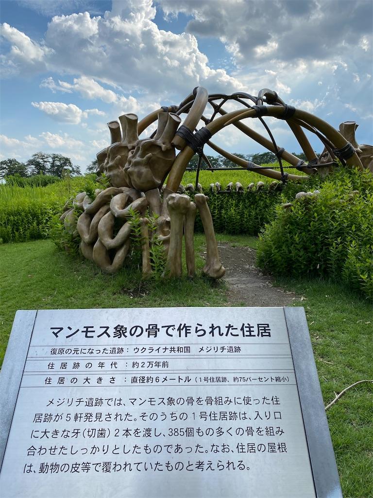 f:id:HIROAKI-ISHIWATA:20210801172916j:image
