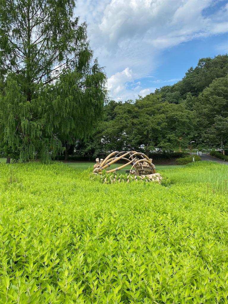 f:id:HIROAKI-ISHIWATA:20210801173450j:image