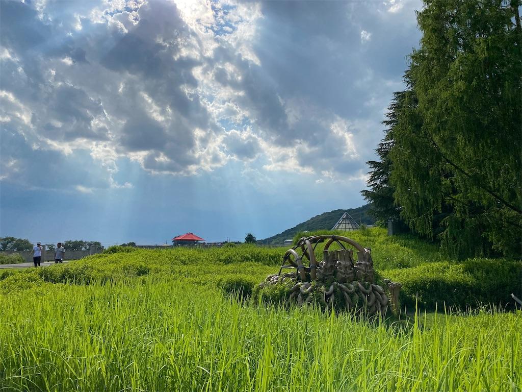 f:id:HIROAKI-ISHIWATA:20210801173553j:image
