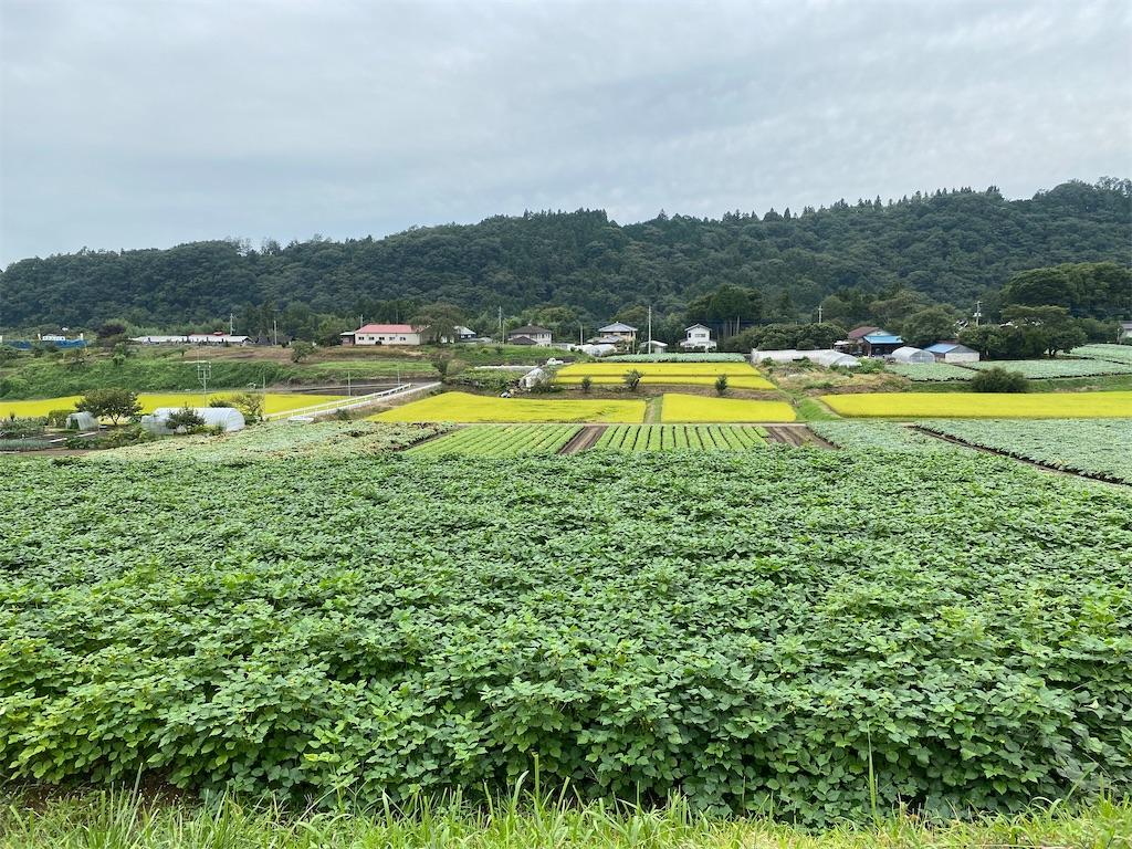 f:id:HIROAKI-ISHIWATA:20210912183315j:image