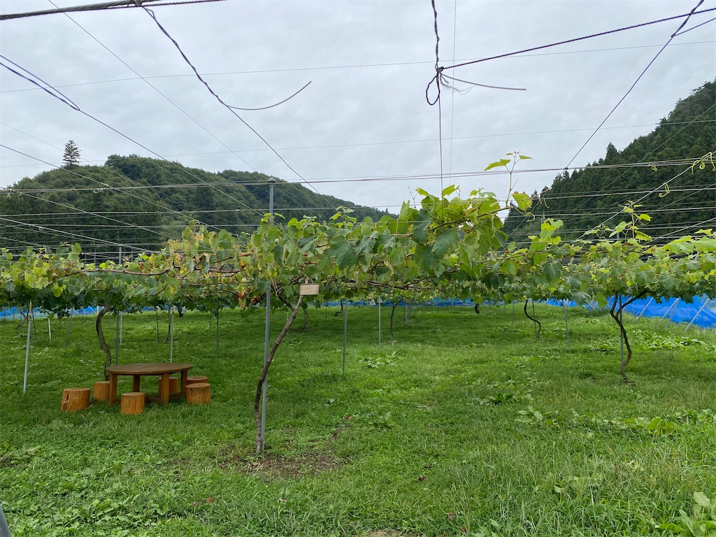 f:id:HIROAKI-ISHIWATA:20210912183334j:image