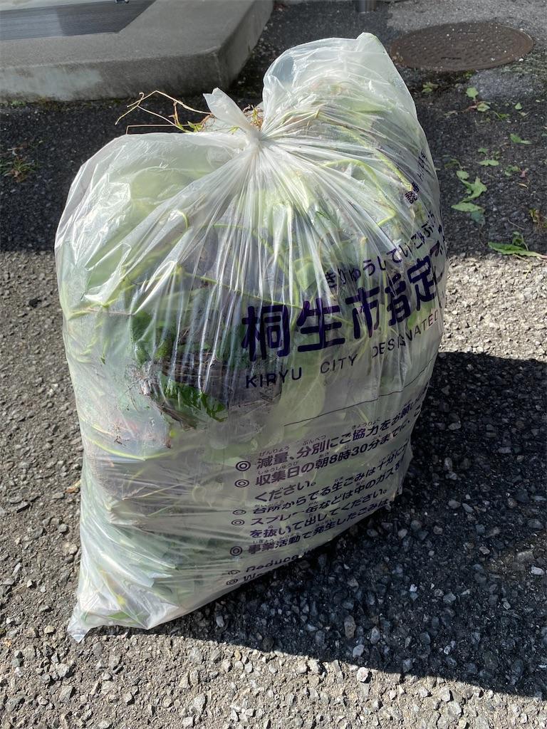f:id:HIROAKI-ISHIWATA:20210919110126j:image