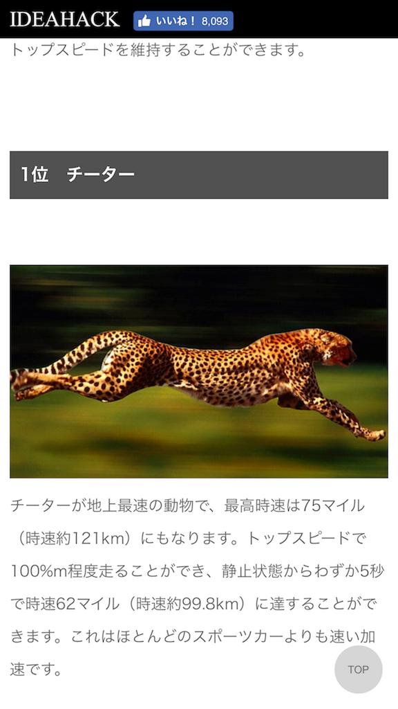 f:id:HK2125:20171028222526p:image
