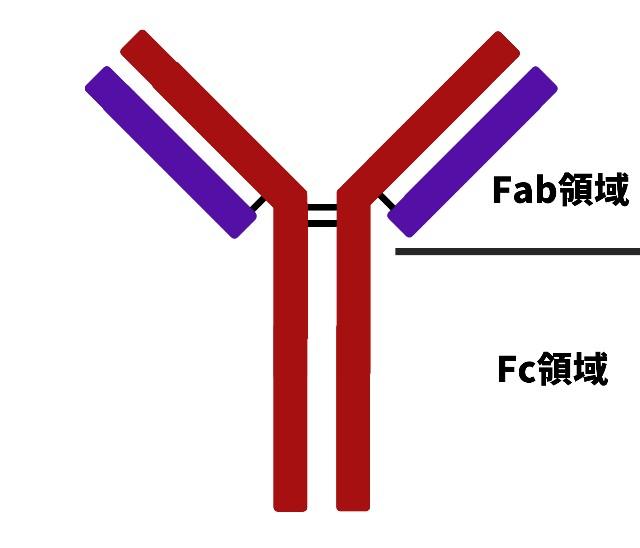 f:id:HKS17881:20200508002834j:plain