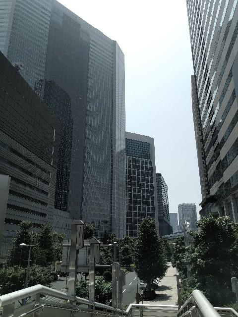 f:id:HKT1989:20200806060306j:plain