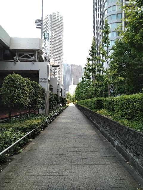 f:id:HKT1989:20200814073122j:image