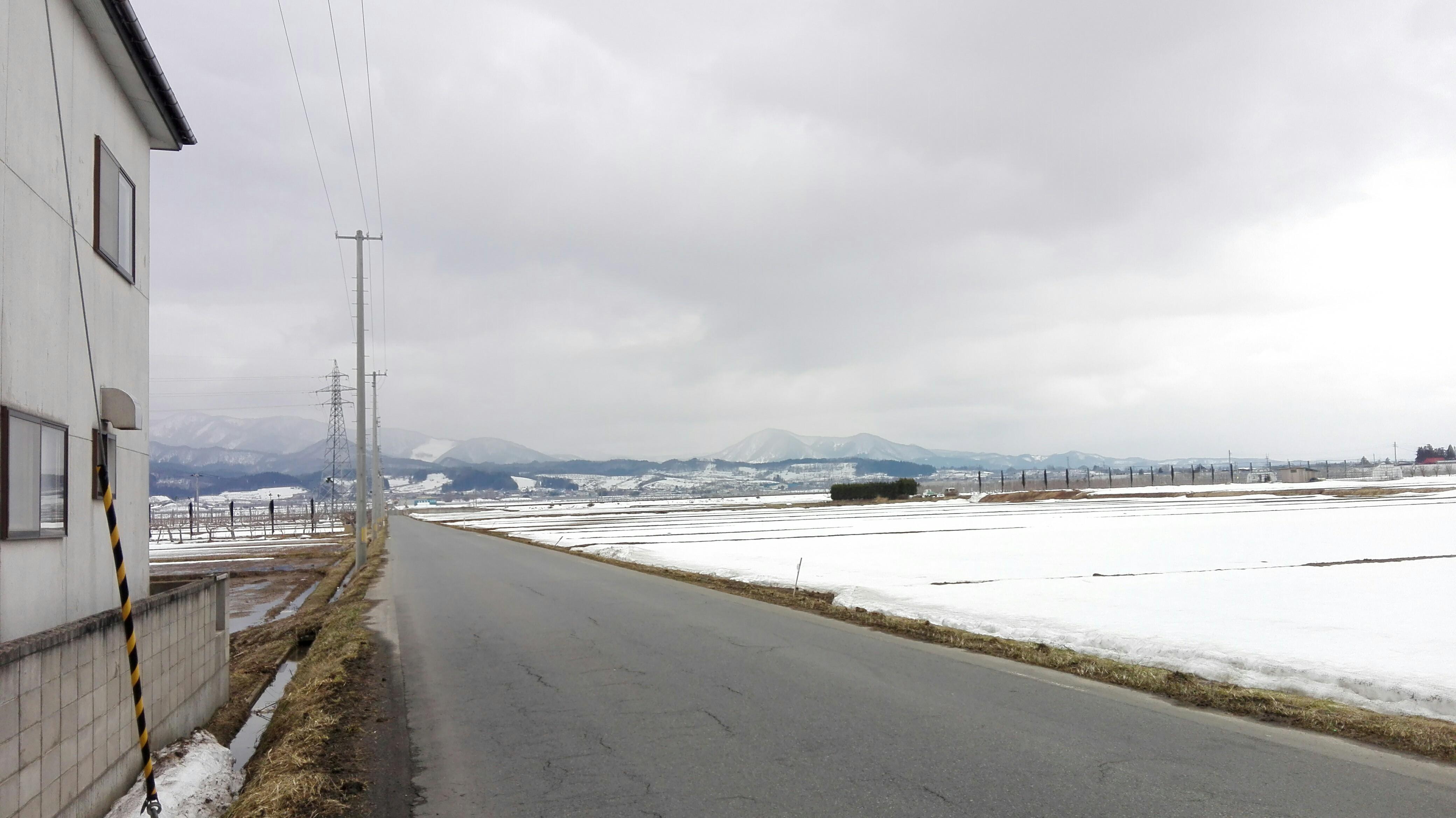 f:id:HOSHIIMO:20171112235123j:image