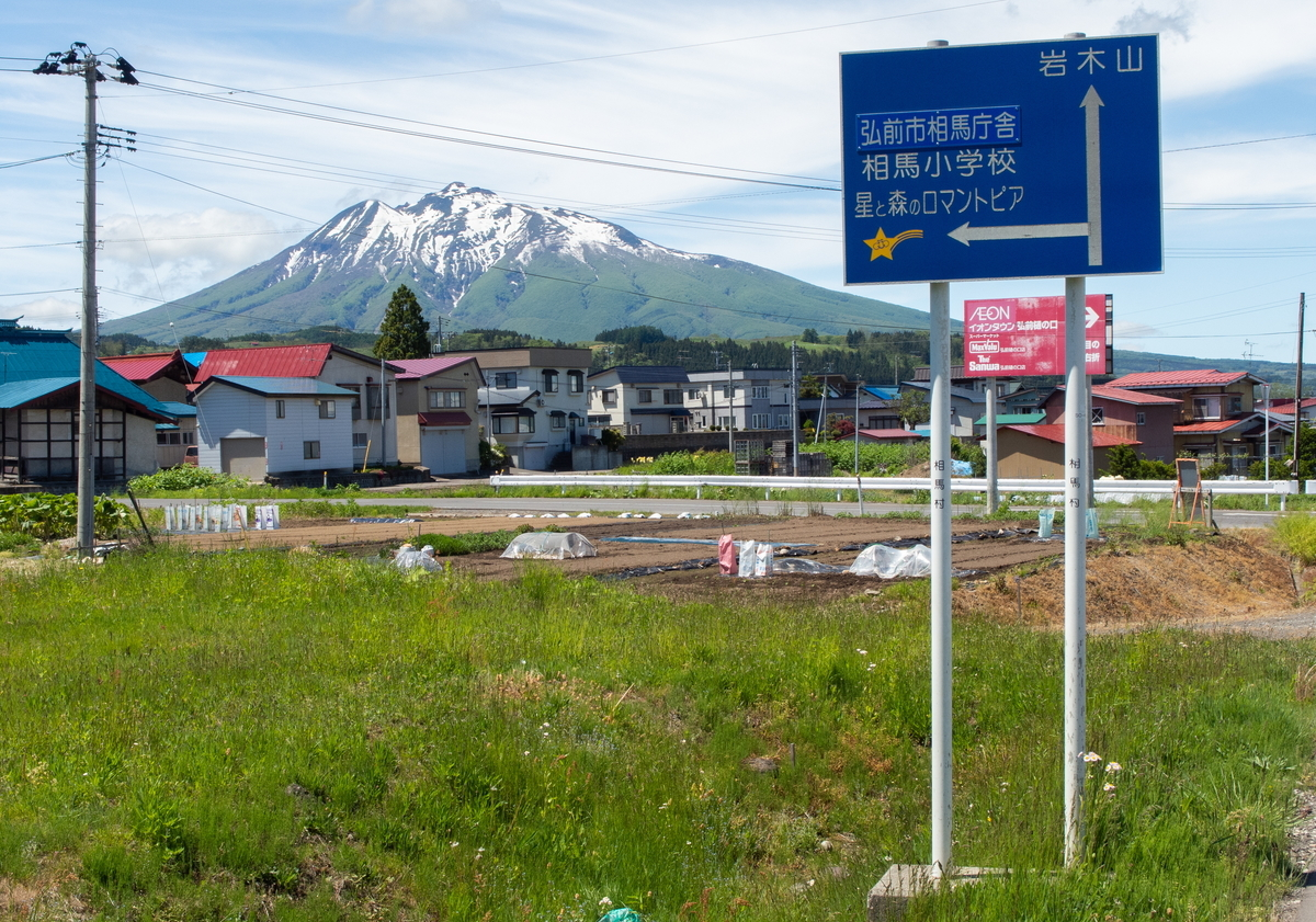 f:id:HOSHIIMO:20200526150738j:plain