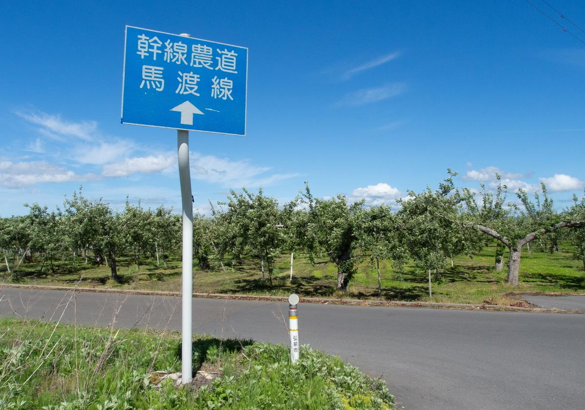 f:id:HOSHIIMO:20200526165355j:plain