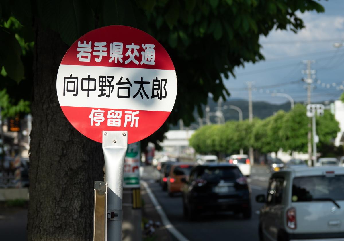 f:id:HOSHIIMO:20200604151848j:plain