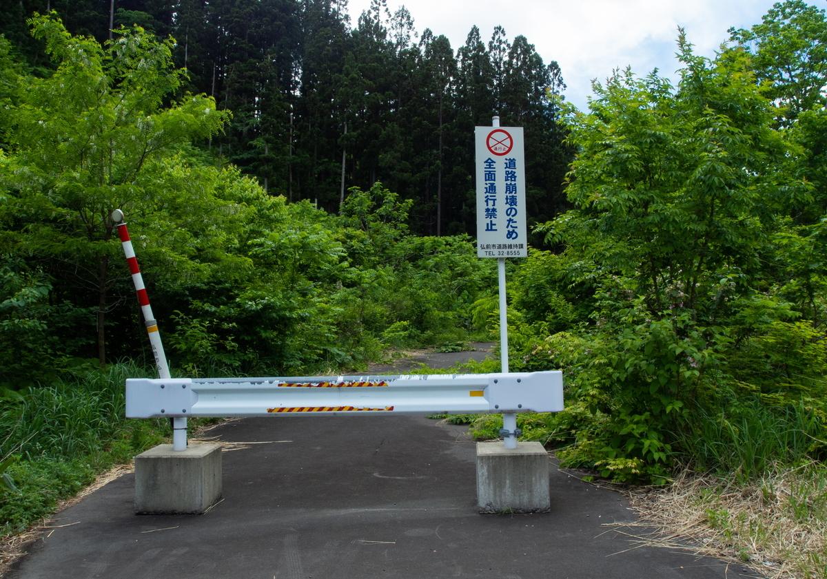 f:id:HOSHIIMO:20200608215920j:plain