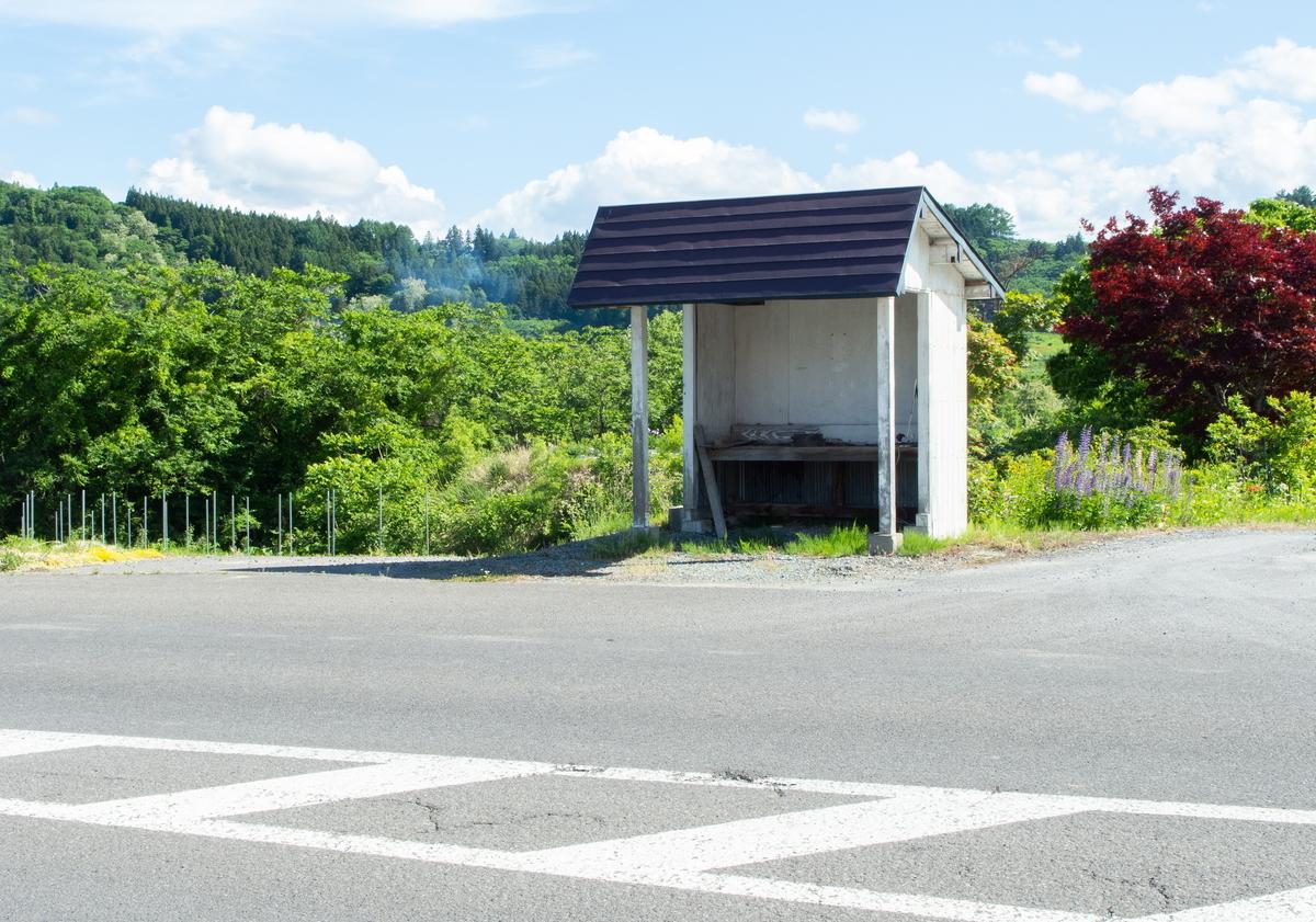 f:id:HOSHIIMO:20200609000436j:plain