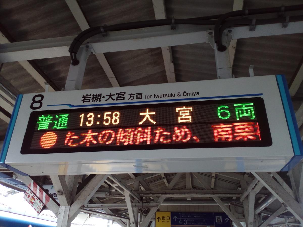 f:id:HOSHIIMO:20200703130226j:plain