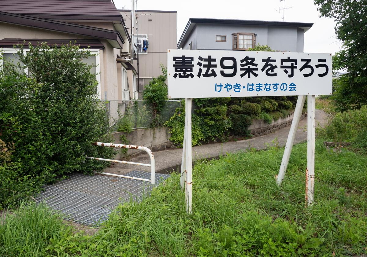 f:id:HOSHIIMO:20200717145053j:plain