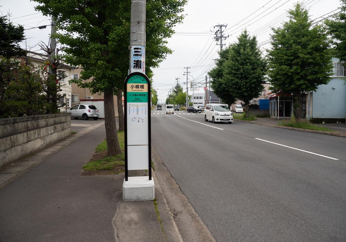 f:id:HOSHIIMO:20200717145301j:plain