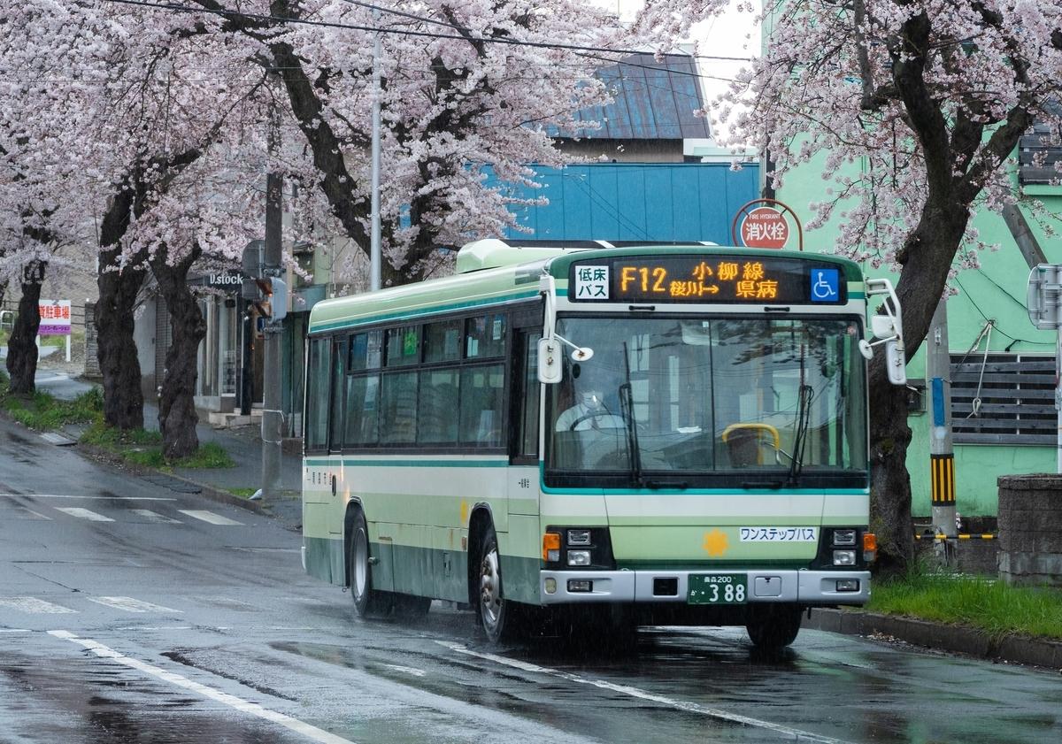 f:id:HOSHIIMO:20200717152030j:plain