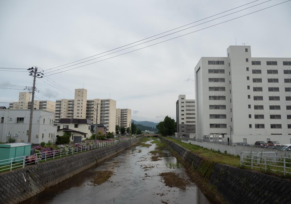 f:id:HOSHIIMO:20200717172800j:plain