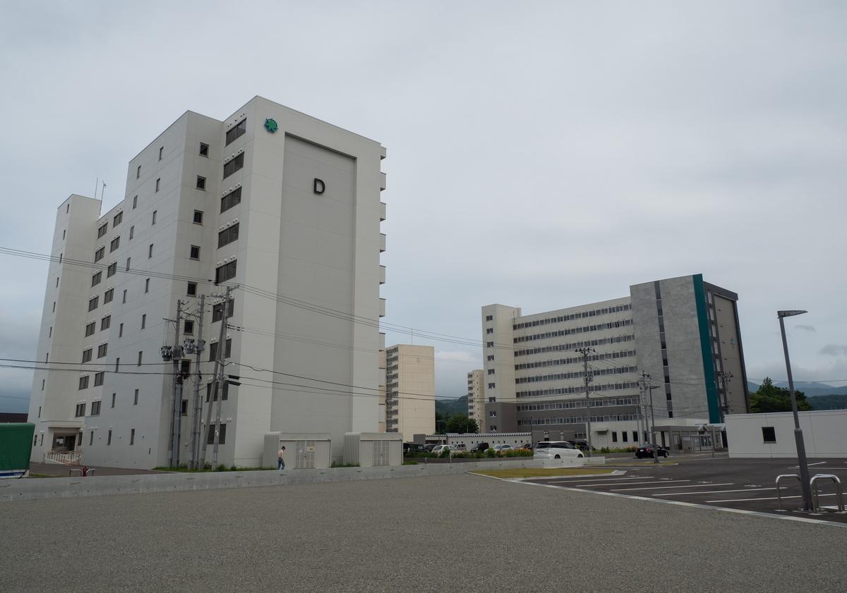f:id:HOSHIIMO:20200717173556j:plain