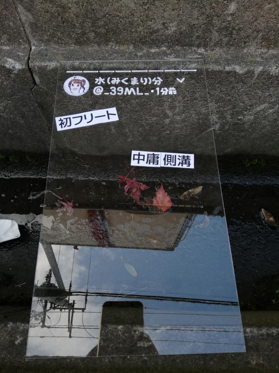 f:id:HOSHIIMO:20201113164700j:plain