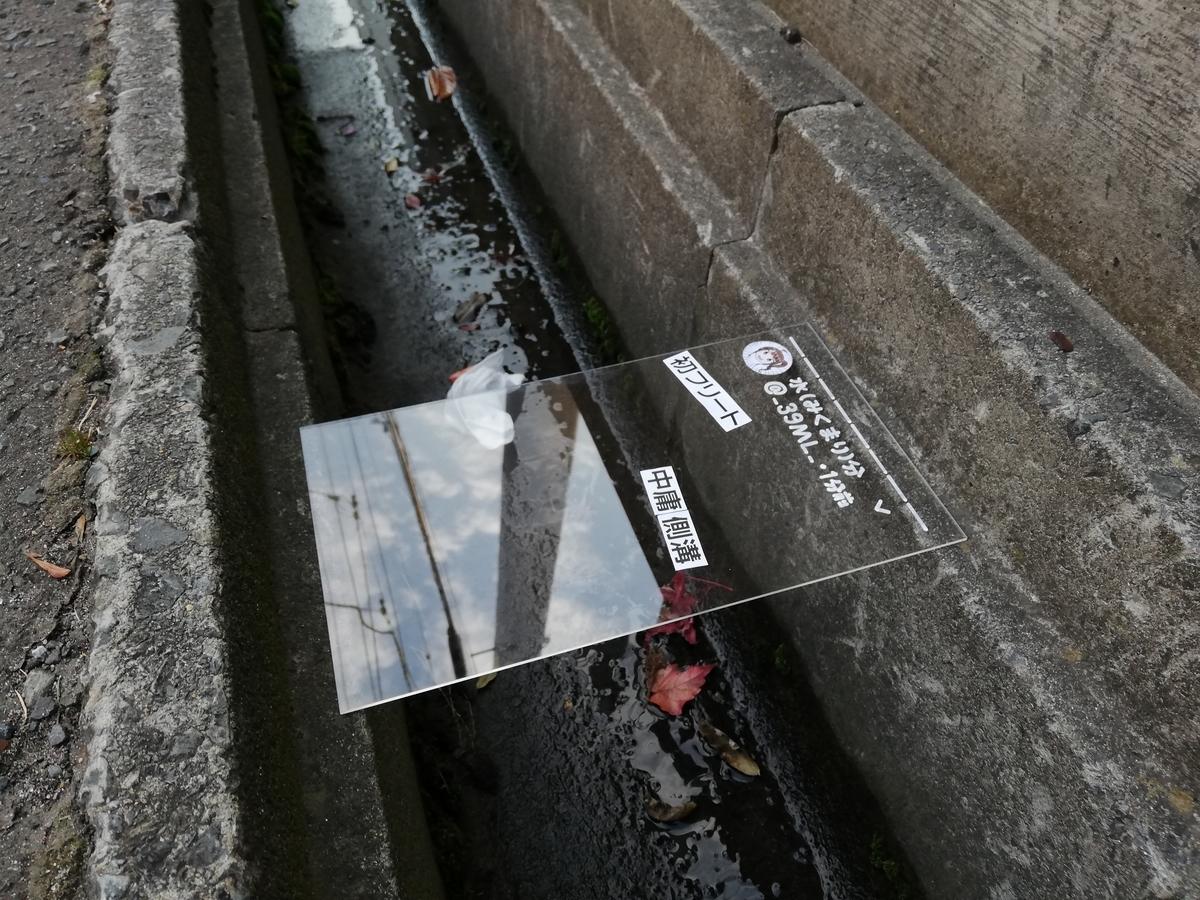 f:id:HOSHIIMO:20201113165518j:plain