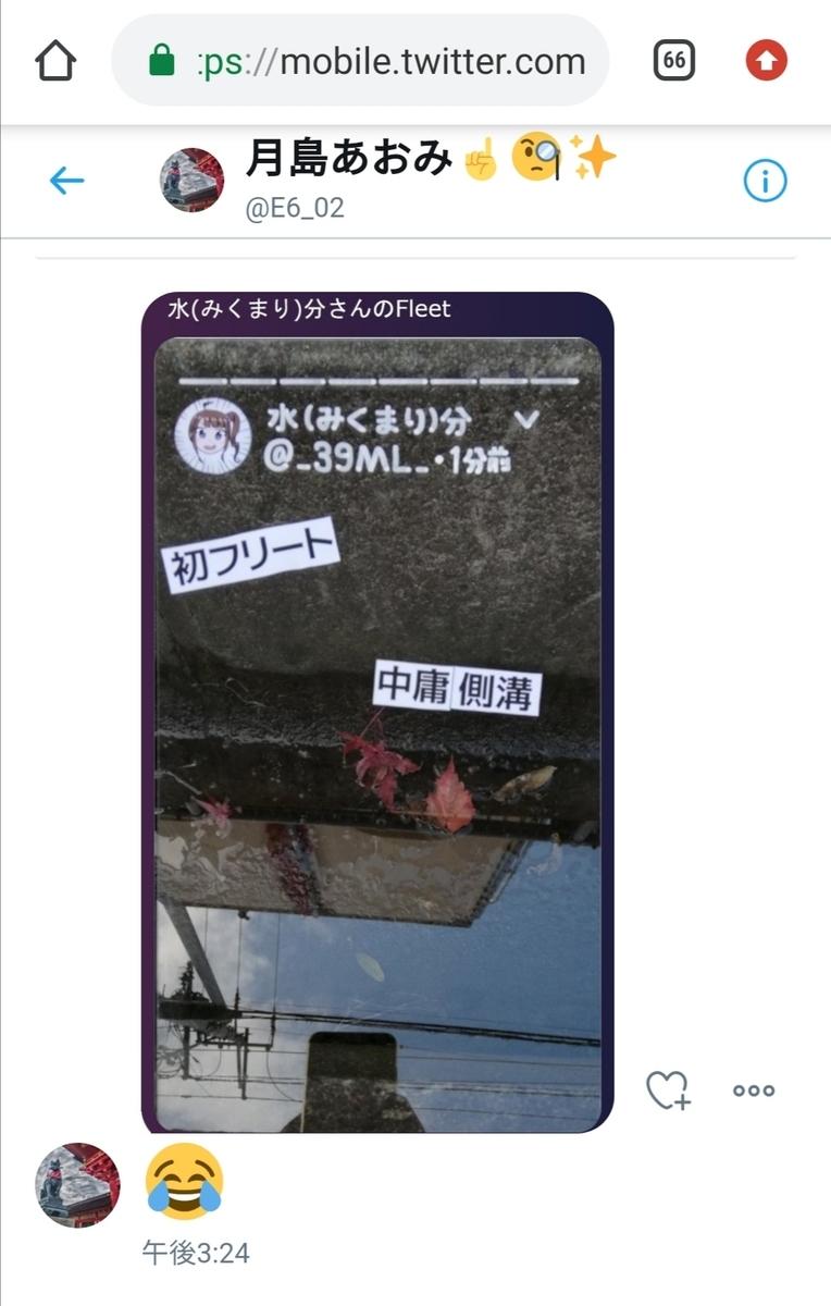 f:id:HOSHIIMO:20201113165724j:plain