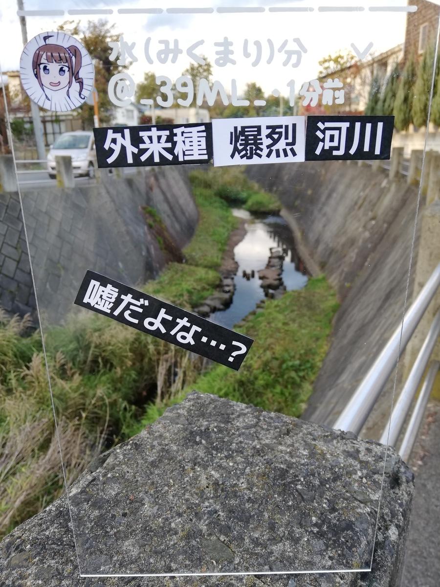 f:id:HOSHIIMO:20201113170007j:plain
