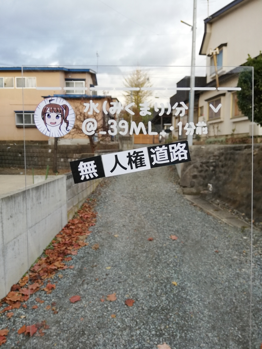 f:id:HOSHIIMO:20201113170422j:plain